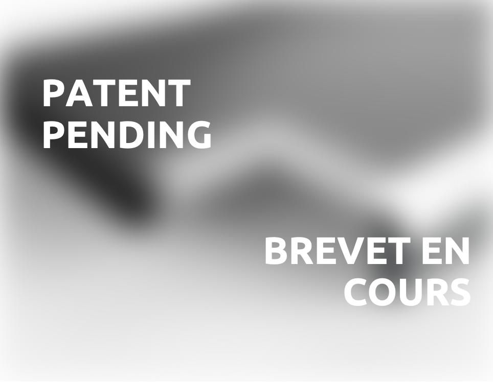 dépôt d'un brevet en cours pending patent